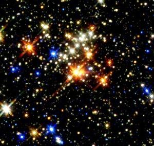 Evening with the Stars, Sunday, Nov. 9